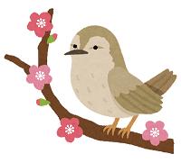 bird_uguisu.png