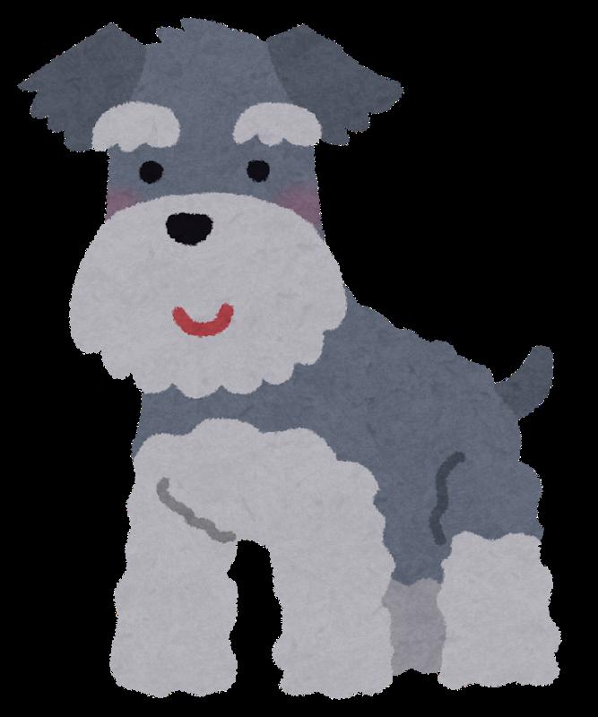 dog_miniature_schnauzer.png