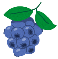 fruit_blueberry.png